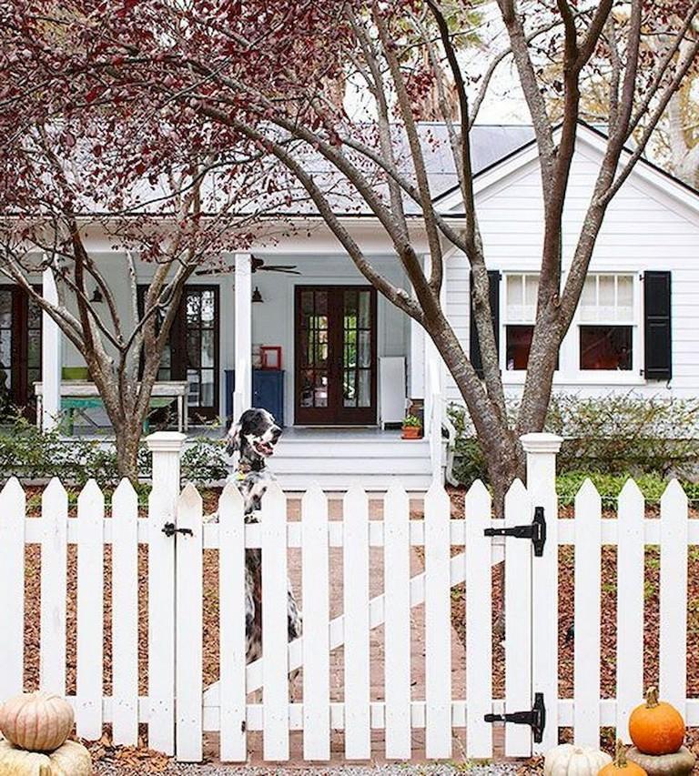48+ Inspiring DIY Cheap Privacy Fence Design Ideas